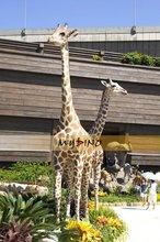 Amusement equipment life size animal model giraffe
