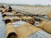 wheat straw mattress knitting machine / Rice straw mat making machine / Straw weaving machine