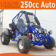 EPA 250cc Gokart Buggy