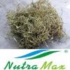 Black Cohosh Plant Extract (2.5%~5% Triterpene glycosides)