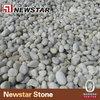 Natural pebble stones for aquarium