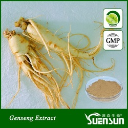 100% Natural Panax Ginseng Extract P.E. Powder/ NSF-GMP Certified Factory
