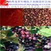 Organic grape seed P.E