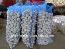 Chinese Fresh garlic 2012