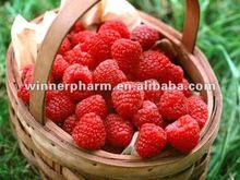 20% raspberry extract powder