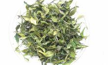 Darjeeling Moonlight Bai Mu Dan White Tea - 2015 Hot Product