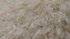 white ponni rice (DX)