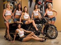 Used Harley Davidson Motorcycles in USA + Custom made
