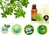veterinary grade oil of Thyme oil