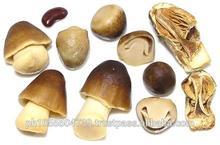 Straw Mushroom,Canned Straw Mushroom in Brine,Canned Straw Mushroom Whole ,