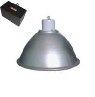 industrial luminaire