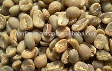 VIETNAM ROBUSTA COFFEE BEANS 2014 NEW CROP