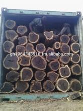 African black wood (Dalbergia melanoxylon)