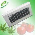 Herramientas que se utilizan en la agricultura 120w led crece lailuminación con 119*1w