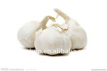 BNP Sell Healthy anti-cancer Organic black garlic in 2014
