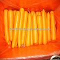 Fournissez la nouvelle carotte 2011 fraîche