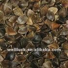 Crop 2011 Raw or Roasted buckwheat /husks