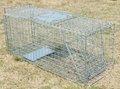 Dobrável um - porta animal vivo armadilha gaiola para raccon, gatos vadios, marmota, opossum, tatus