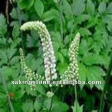 High Quality Black Cohosh Herbal Extract