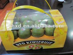 fresh kiwi fruit with rich Nutritional