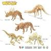 3D Educational Puzzle Toy