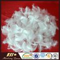 Lavado pato branco pena 3-5cm