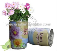 Tin Flower,Can Flower,Tin plant can flower