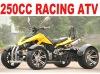 EEC 250CC ATV QUAD BIKE (MC-390)
