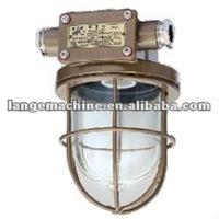 Incandescent pendant light/ lamp