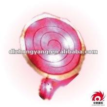 Love Lollipop Gift Decor Pillow