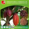 Theobroma Cacao Extract Powder