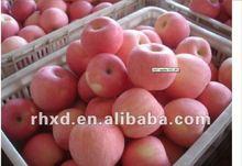 Chinese Fuji Red Apple