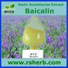 GMP Factory Supply Natural Radix Scutellaria Extract