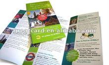 Tri-fold Paper Brochure