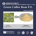 De alta calidad pura fabricante de café verde 50%