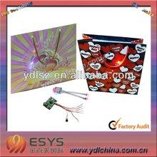 LED light gift bag for promotion