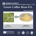 50% الطبيعية فقدان الوزن القهوة الخضراء استخراج بقول