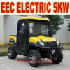 Electric Vehicle 4x4 5KW