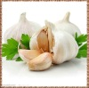 top quality chinese normal white garlic 2012