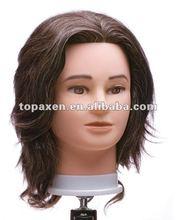 Hairart's male, mannequin head
