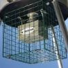 Square Varmint Cage /factory