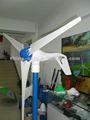 200 W petit nice utiles vent moulin, Générateur aimant permanent alternateur