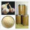 Garlic Extract fine powder natural plant extract powder