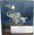 pombo modelo de esqueleto