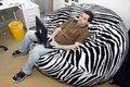 Zebra- raya de gamuza sofá pelotita