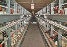 hot-sale autimatic vertical lage-scale boiler chicken cage
