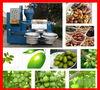 advance design full automatic avocado oil press machine 6YL-160A