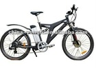 2012 hot green power electric bike