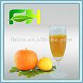 100% naturel citrouille purée