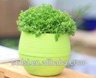 round colorful mini home garden